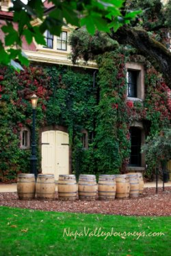 inglenook wine, napa valley winery
