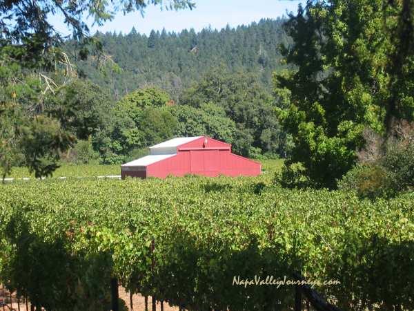 st. helena vineyard, napa valley