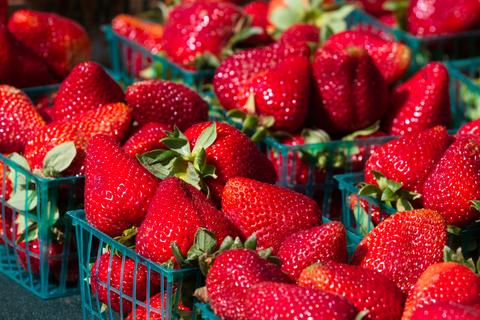 napa valley farmers market strawberries