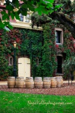 inglenook wine, napa valley winery